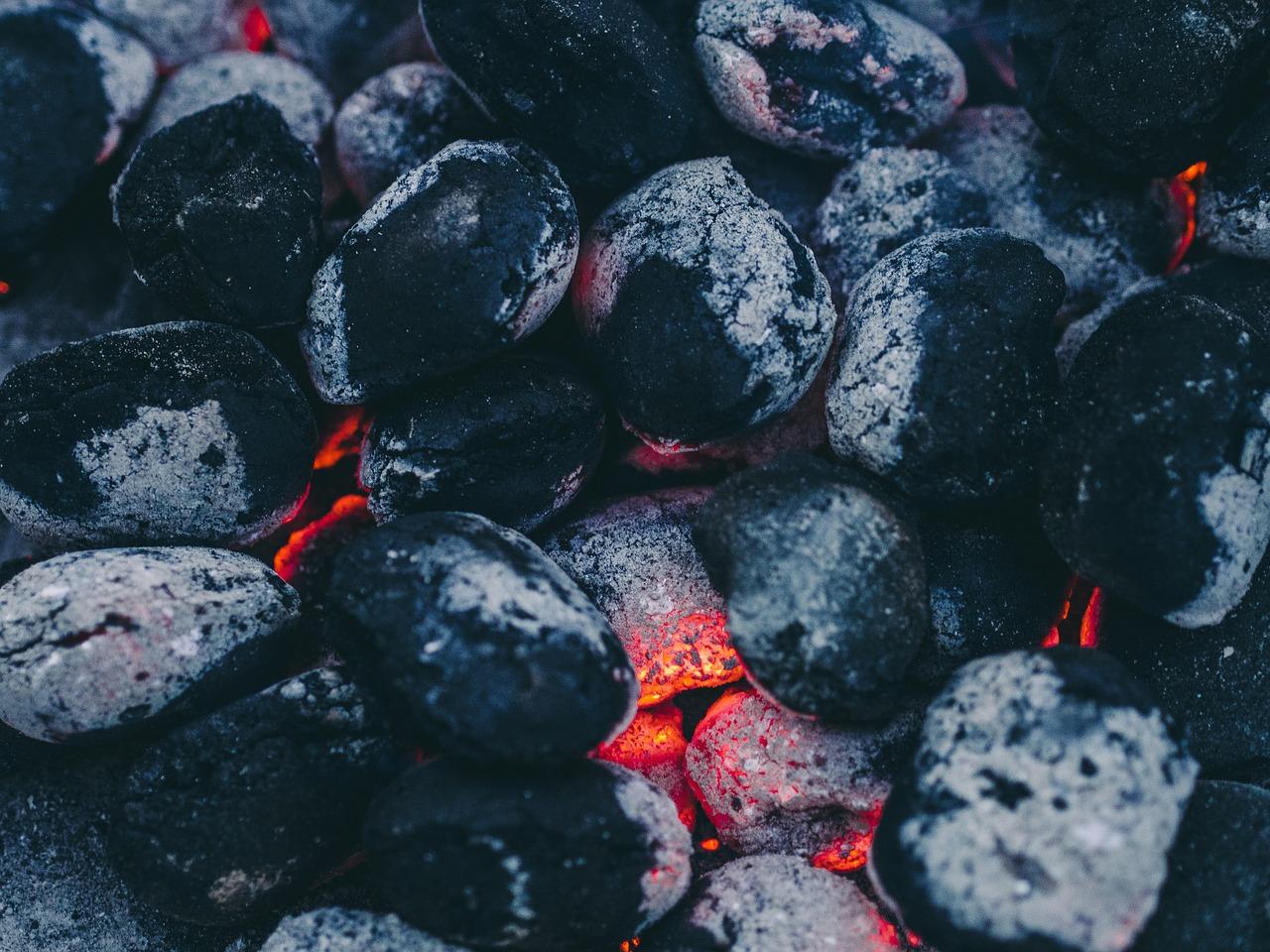 Jaki węgiel kupić na zimę?
